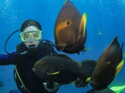Make-A-Wish Australia wish kid Sam diving with fish at Hamilton Island